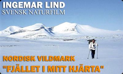 Fjalletimitthjarta-med-Ingemar-Lind-2016